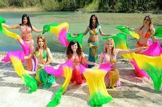 Danza del ventre spettacoli le Sirene del Nilo