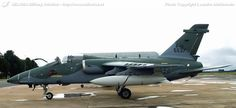 Brazilian Air Force, Thing 1, Ghibli, Fighter Jets, Trainers, Aviation, Aircraft, Military, Space