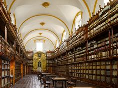 Самые красивые библиотеки мира. Библиотека Палафоксиана, Пуэбла, Мексика