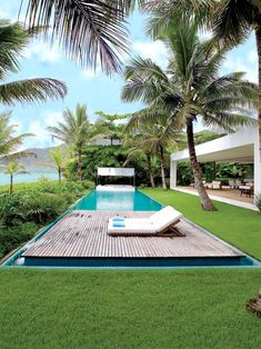 Tropical Planting, timber decking, white structure, lawn, plantings in lawn, pool furniture