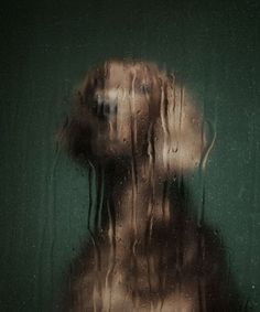 Portraits of Abandoned Dogs by Martin Usborne
