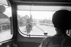 B57.Cernauti.Der Schlagbaum vor Cernowitz aus dem Autobus.24. Juli 1941.Fotograf Willy Pragher (2) Home Appliances, Autos, Stricken, Trees, House Appliances, Appliances