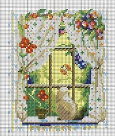 finestre e gattini