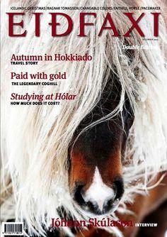 Icelandic Beauty Icelandic Horse, Ragnar, Horses, Animals, Beauty, Island Horse, Animales, Animaux, Horse