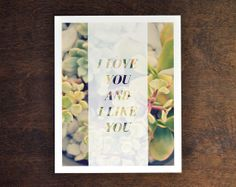 Love Quote Art Print, Word Wall Decor, Modern Succulent Photograph, 5x7, 8x10, 11x14
