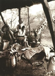 desert-dreamer:  Peter Beard working at his bush camp in Kenya