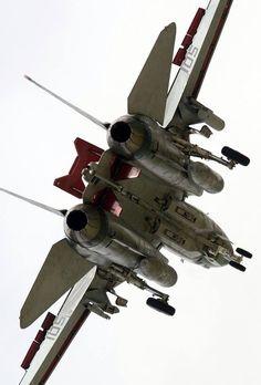 F-14 Tomcat breaking