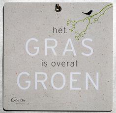 poster het gras is overal groen