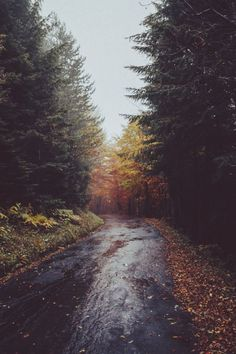 Beautiful landscape photos from across the world. Pale Tumblr, Beautiful World, Beautiful Places, Autumn Aesthetic, Belleza Natural, Adventure Is Out There, The Great Outdoors, Wonders Of The World, Mother Nature