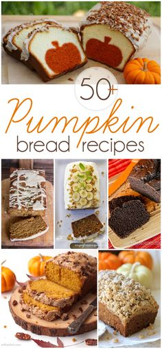 Five Approaches To Economize Transforming Your Kitchen Area The Best Of All Those Pumpkin Bread Recipes Over 50 Yummy Recipes Via Apple Recipes, Pumpkin Recipes, Fall Recipes, Sweet Recipes, Yummy Recipes, Pumpkin Ideas, Thanksgiving Recipes, Amazing Recipes, Tasty Kitchen