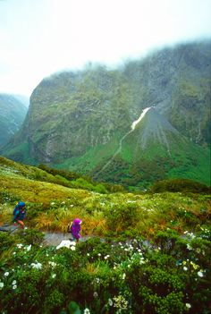 Hikers on Mackinnon Pass, Milford Track, South Island, New Zealand