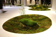 Makoto Azuma. Arte vegetal y arte con musgo. - Urbanarbolismo