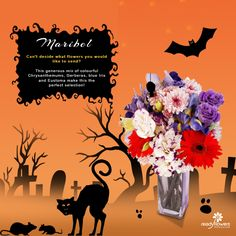 Are you in for a spooky treat this Halloween? Put an enchanting spell inside your home with these bewitching bloom.