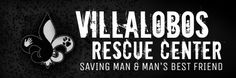 I want to visit the Villalobos Rescue Center in NOLA...even if it means just walking by it. LOL