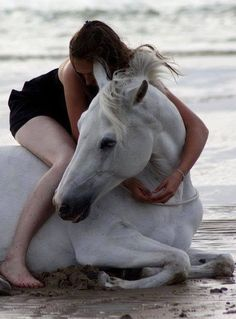 Personal fondness for white horses . All The Pretty Horses, Beautiful Horses, Animals Beautiful, Cute Animals, Horse Love, Horse Girl, Majestic Horse, Clydesdale, Foto Art