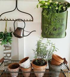 Rusty Garden, Wooden Garden, Garden Tool Shed, Garden Sheds, Garden Gate, Herb Garden, Beautiful Home Gardens, Gardening Tips, Indoor Gardening