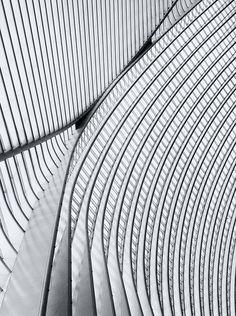 Calatrava lines VI by jefvandenhoute, via Flickr
