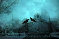 "Surreal Gothic Photos - Ravens, Crows, Gothic Ravens, Haunting, Fantasy Art, Spooky, Eerie, Teal, Fine Art Photograph 8"" x 12"". $28.00, via Etsy."