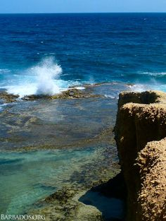 Impressive blow holes, ocean pools carved by nature and rugged clifftops make Little Bay in the north of #Barbados a wonderful place to explore! http://barbados.org/bclittlebay.htm