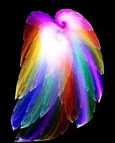 Colorful Angel Wings