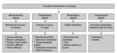 Periodisation: Theory & Methodology of Training Bompa + Haff
