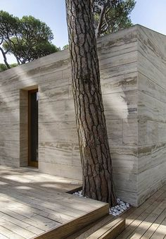 Stone Cladding  House in a Pine Wood by Sundaymorning and Massimo Fiorido Associati