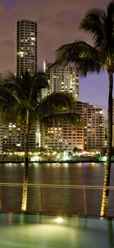 Iphone X Wallpaper Miami iphone wallpaper Hd - Best Home Design Ideas Miami Iphone Wallpaper, Tropical Wallpaper, City Wallpaper, Nature Wallpaper, Photo Wallpaper, Nature Hd, South Beach Miami, Cool House Designs, Wallpaper Downloads