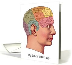 General / Back to School card: My Brain is Full Up School Card by First Night Design
