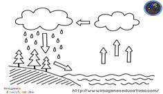 El ciclo del agua es el proceso de circulación del agua entre los distintos compartimentos de la hidrosfera. Se trata de un ciclo en el que hay una intervención de reacciones químicas, y el... Earth Science Activities, Easy Science Experiments, Science Chemistry, Science Worksheets, Preschool Education, Early Education, Worksheets For Kids, Science For Kids, Preschool Activities