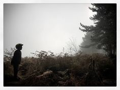 Shouting Pheasants in Errington Woods.#bodhiboy #blackandwhite #ish #erringtonwoods