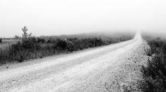 https://flic.kr/p/BEyc6P | Morning Mist  at  Sicó  -  Pombal,  Portugal | www.instagram.com/vitorjkphotography/ -00- vitorjkworld.blogspot.pt/ - twitter.com/VitorJunqueira -