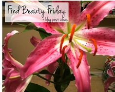 Find Beauty Friday + blog post ideas
