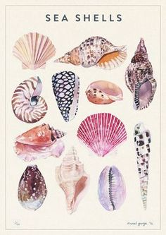 Nature - marcel george illustration Organic forms, a bit more forgiving to paint? Beach pebbles too?