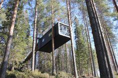 Tree Hotel in Sweden http://idolmag.co.uk/sites/default/files/uploads/treehotel_07.jpg