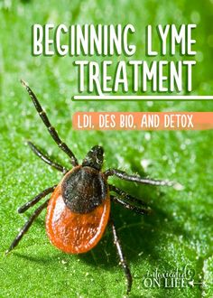 The beginning of Lyme treatment. LDI, DES BIO, and Detox. Read on to learn more about this.
