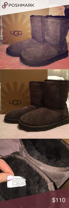 UGG Classic Short brown boots *Brand new* classic short brown Ugg boots UGG Shoes