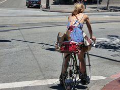 so, i think you should ride a bike