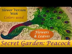 Slower Version - Peacock - Secret Garden by Johanna Basford   Flowers and Leaves - YouTube