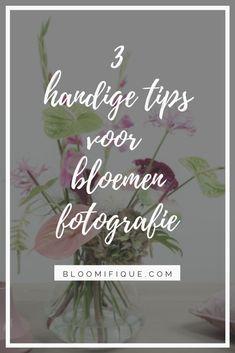 3 handige tips voor bloemen fotografie | Bloomifique | anthurium, bloemen, bloem, #anthurium #bloemen #fotografie