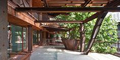 Şehrin Ortasındaki Ağaç-Apartman 150 Sakinini Etrafındaki Ağaçlarla Çevreliyor