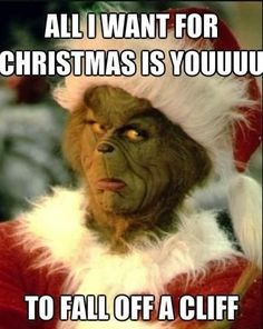 Merry Christmas from the Grinch so how I feel right now                                                                                                                                                      More