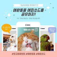 애완동물 SNS 배너 템플릿 / 동물스타그램 Event Page, Advertising Design, Ecommerce, Promotion, Banner, Layout, Content, Cards, Mall