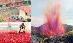 Vulcão expele 8 milhões de pétalas de flores e cobre uma vila inteira na Costa Rica.