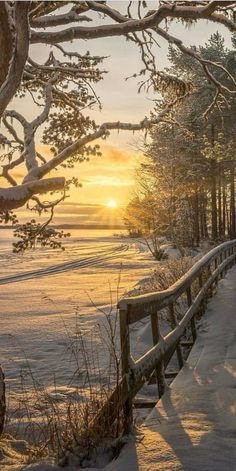 Winter sunrise or sunset at its best!