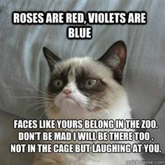 Roses are red, violets are blue. Faces like yours belong in the zoo. Don't be mad I will be there too. Not in a cage but laughing at you.