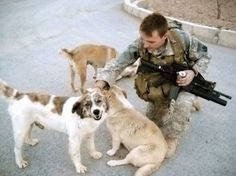 """When Georgia National Guardsman Chris Duke was serving in Afghanistan, he made friends with the locals - stray dogs Sasha, Target and Rufus. """"A lot of us used the three of them as an escape when you're homesick,"""" Duke said. But, as CBS News national correspondent Jeff Glor reports, the dogs did much more than keep him company. """"I firmly believe I wouldn't be here today if it weren't for him,"""" Duke said.  Read more here > http://www.cbsnews.com/news/heroic-afghan-dog-reunited-with-us-soldier/"""