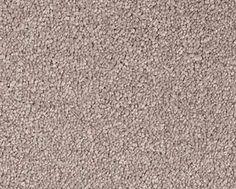 Sandpiper carpet idea from carpet court urban hampton range