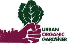 66 Things You Can Grow At Home?? In Containers?!?!?!? - Urban Organic Gardener
