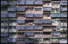 https://flic.kr/p/vfqaf1 | This is how Hong Kong developer hegemony to evict tenants. | In Hong Kong, if the property investor collect 80% property shares, they can force to evict all tenants. Recently, the media discovers that the investor sets up scaffolding outside the building to indicate those housing unit where the tenants  have been evicted, and then to give pressure and cause inconvenient for those that have not yet been evicted.  Canon EOS 1Ds Canon EF 14mm f/2.8L II USM