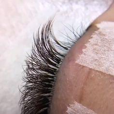 hair and beauty over 40 Natural Fake Eyelashes, Wispy Eyelashes, Perfect Eyelashes, Big Lashes, False Eyelashes, Eyelash Extensions Styles, Individual Eyelash Extensions, Eyelash Extensions Before And After, Eyelash Technician